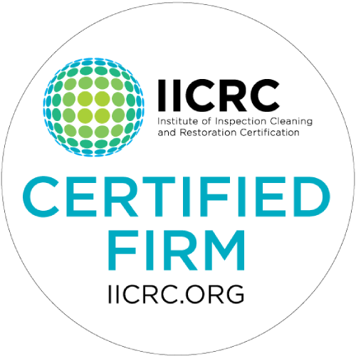 IICRC Certified Carpet Cleaning Dallas