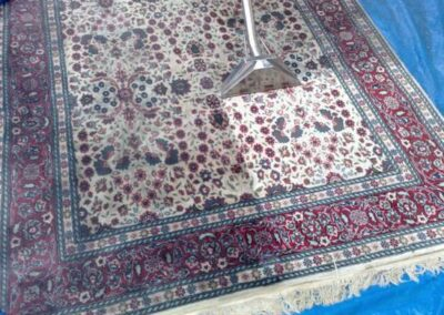 Professional Rug Cleaners Dallas